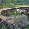 Disney Discovery Island na Floridi