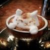 Umjetnik i barist Kazuki Yamamoto radi 3d instalacije na pjeni od kave