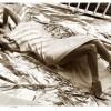 Cindy Crawford za časpis Muse