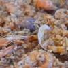 Rižoto s plodovima mora
