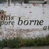 Jeste li ikad vidjeli prirodne grafite?