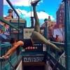 Cure čiji Instagram profili će vas natjerati na vježbanje