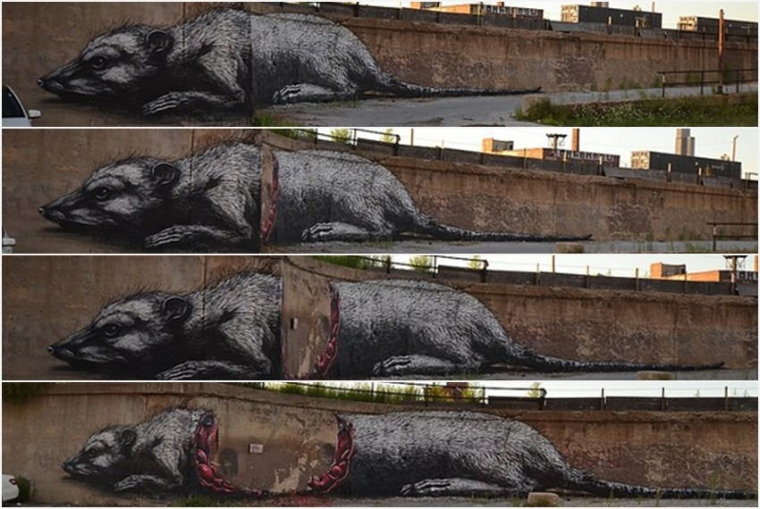 Chicago, SAD, autor: ROA