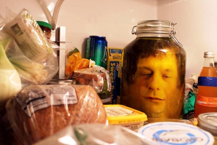 Glava u hladnjaku