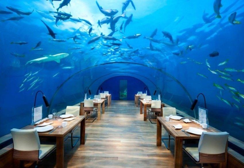 The Ithaa Undersea nalazi se na pet metara dubine i najljepši je restoran na svijetu