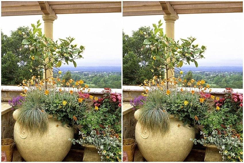 S dolaskom proljeća sve se više pažnje posvećuje uređenju vrtova i balkona