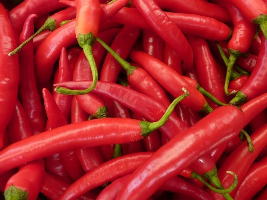 Crvene papričice