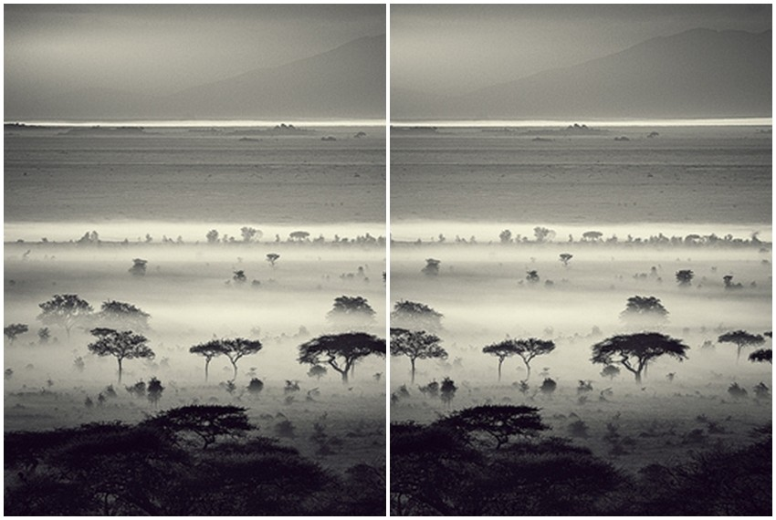 Serengeti, Tanzanija