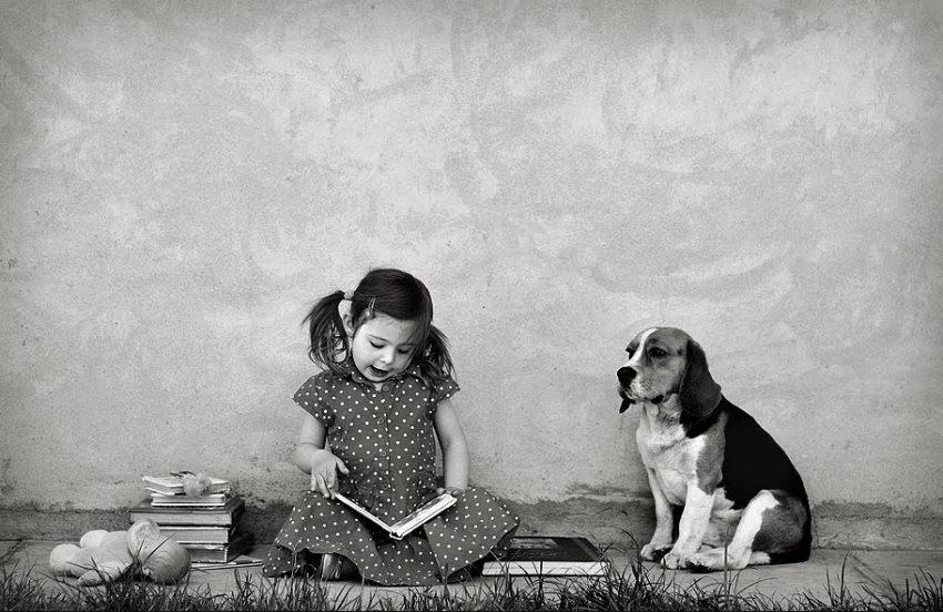 """Kolumna """"Pas, djevojčica i puder""""Kolumna """"Pas, djevojčica i puder"""""""