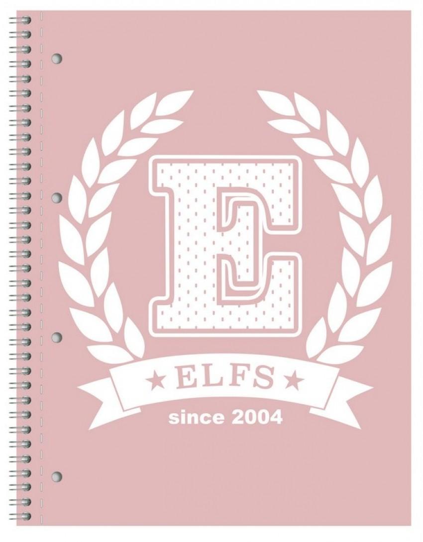 Elfs love school