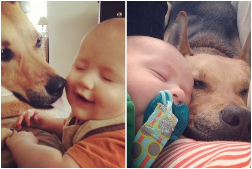 Carter i Toby
