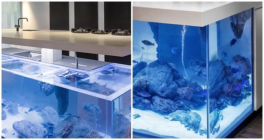 Sada možete kuhati na vrhu akvarija