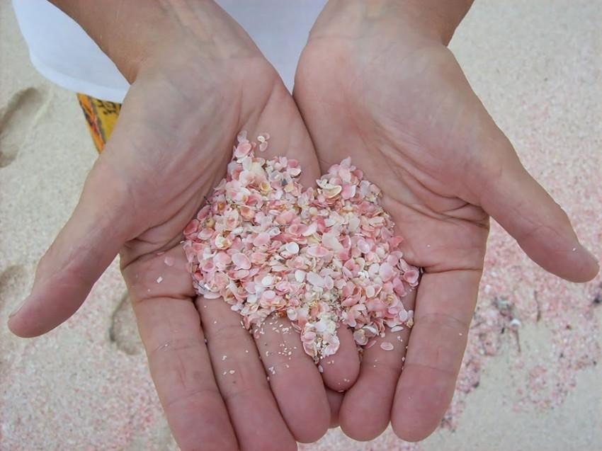 Ružičasti pijesak na Bahamima