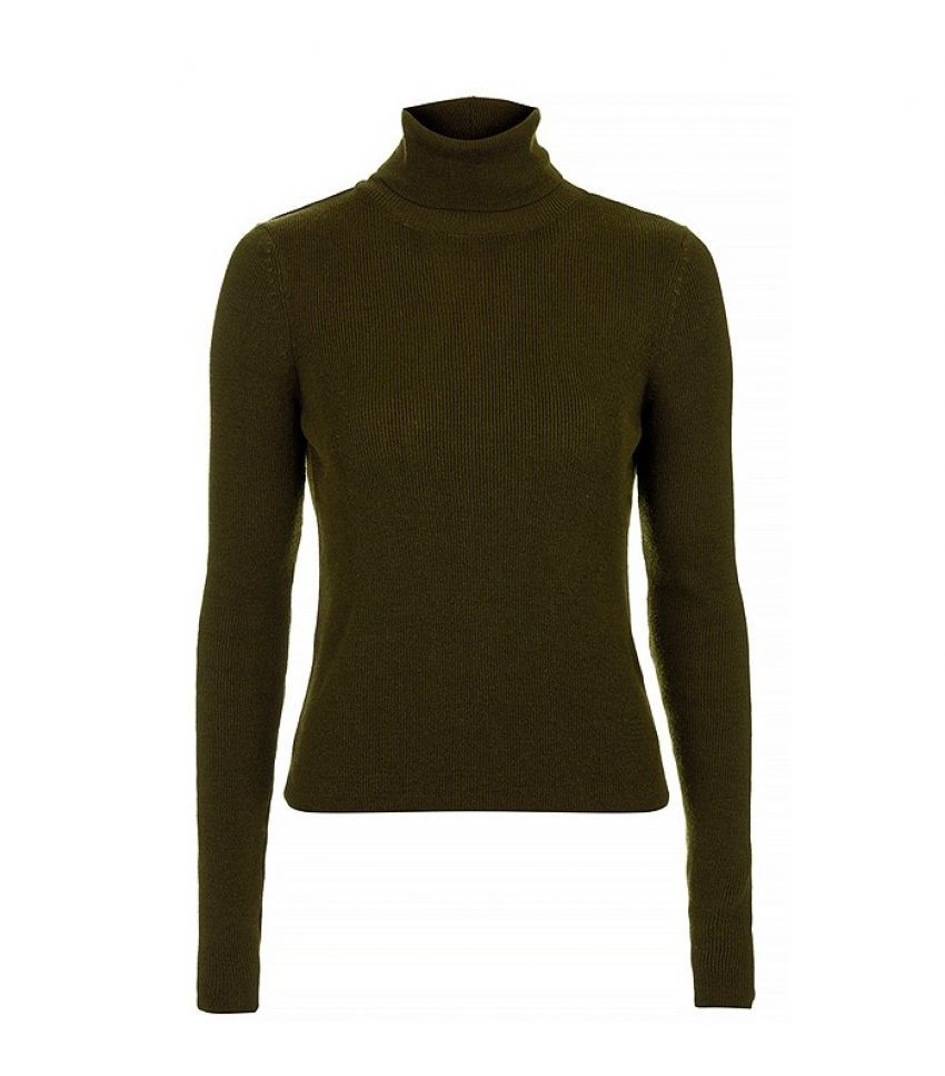 Topshop Fine Gauge Ribbed Roll Neck Top