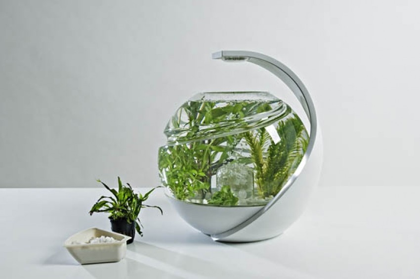 Avo akvarij