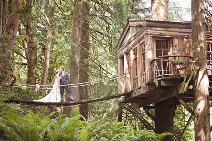 Vjenčanje u kućici na drvetu