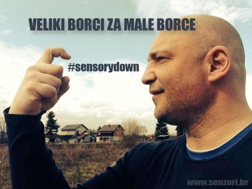 Sensorydown