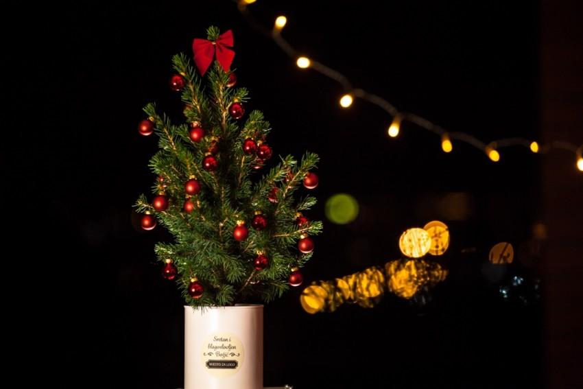 Ova fenomenalna hrvatska ideja mladog bračnog para Anje i Matije Đurinek, idealan je dar za Božić, a može biti i inovativan poslovni poklon te fantastičan ukras za stan ili ured. Savršeno pristaje u svaki mali prostor ili ured jer ga je iznimno lako