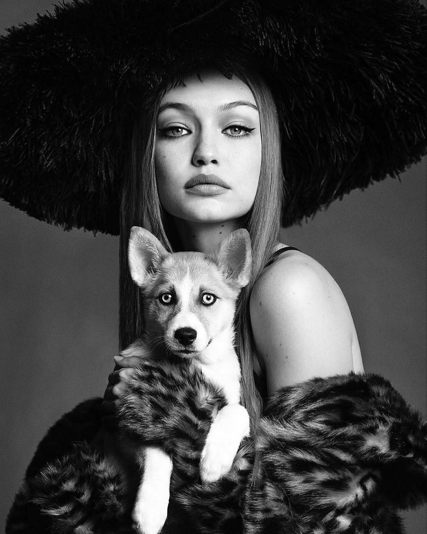 Gigi Hadid Maybelline
