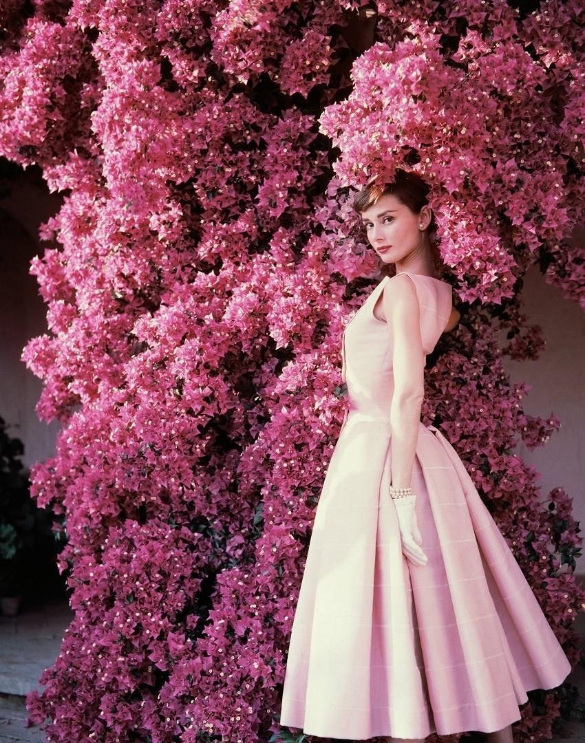 Audrey Hepburn filmski maraton