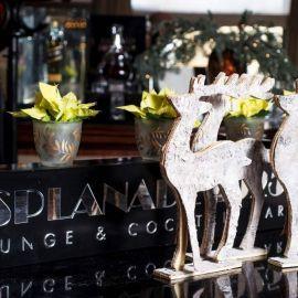 Čarobni Advent u hotelu Esplanade