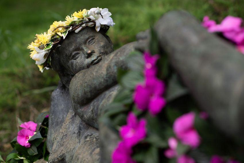 Cvjetne skulpture kao najava FloraArta